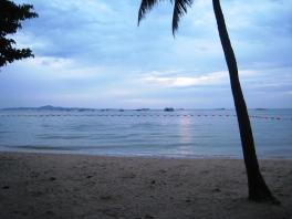 thai_pokkari (158)
