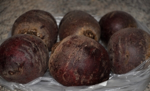 vuohenjuusto-punajuuri (1)